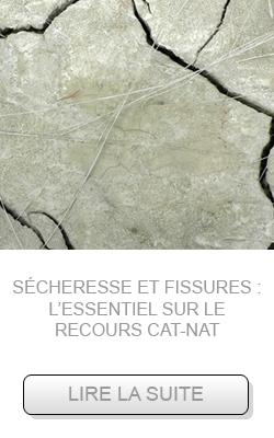 catanat-octobre2016-recours_2